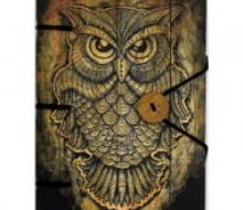 Owl Parchment Journal