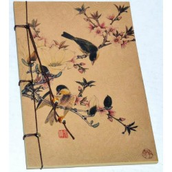 String Bound Birds Journal