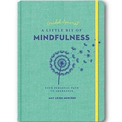 Little Bit of Mindfulness (hc) by Amy Leigh Mercree