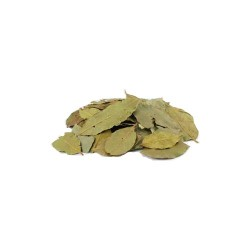 Bay Leaves Whole 2oz (Laurus nobilis)