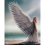Anne Stokes Gift Trio - Spirit Guide Angel Board, Spirit Guide Angel Card 6 Pack & Cameo + FREE Canvas Art Print