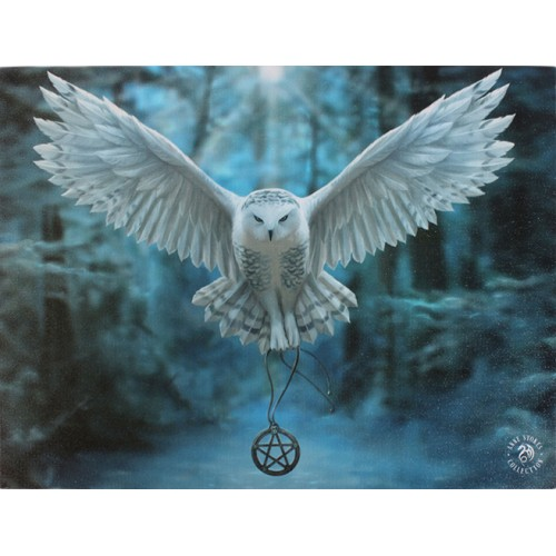 Awake Your Magic Canvas Art Print - Anne Stokes