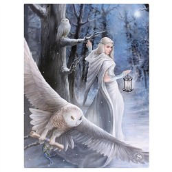 Canvas Art Print - Anne Stokes Midnight Messenger