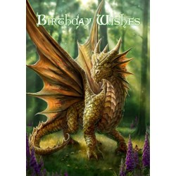 Anne Stokes Birthday Card 6 Pack - Friendly Dragon