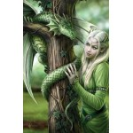 Anne Stokes Gift Trio - Kindred Spirits Dragon Cameo, 6 Pack Cards & Canvas Art Print