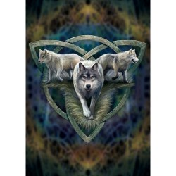 Anne Stokes Wolf Card 6 Pack - Wolf Trio